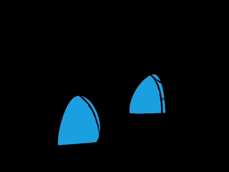 puurpubliek-sectoren